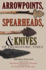 42087 - Wilson, T. - Arrowpoints, Spearheads, and Knives of Prehistoric Times