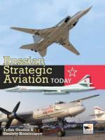 44838 - Gordon-Kommisarov, Y.-D. - Russian Strategic Aviation Today