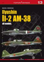 49923 - Noszczak, M. - Top Drawings 13: Ilyushin Il-2AM-38 all models - decals by Cartograf