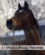 53233 - Porro, S. - Cavalli delle Voloire (I)