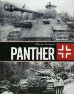 63105 - Anderson, T. - Panther