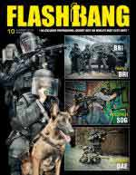 63227 - Flashbang,  - Flashbang 10: BRI / SOG / DAE