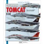 65139 - Lambert-Debarre, G. - Avions et Pilotes 23: Grumman F-14 Tomcat
