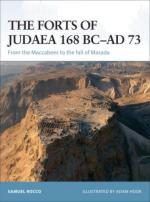 38054 - Rocco-Hook, S.-A. - Fortress 065: Forts of Judaea 168 BC-AD 73. From the Maccabees to the Fall of Masada