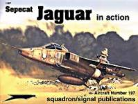 32261 - Ashley, G. - Aircraft in Action 197: Sepecat Jaguar