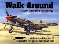 15281 - Phillips, G. - Walk Around 013: Allison Engine Mustang